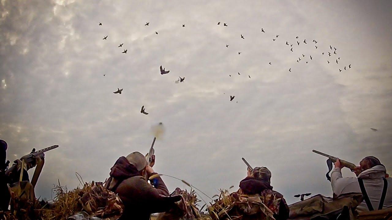 Duck Hunting Waterfowl Hunting: So ...