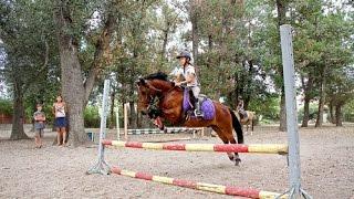 Activités Equestres Eté 2015