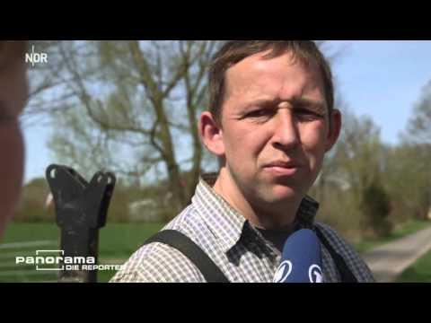 Die Ramschkälber NDR Panorama - Die Reporter