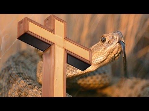 Snake-Handling Christian Refuses Antivenom -- For Jesus