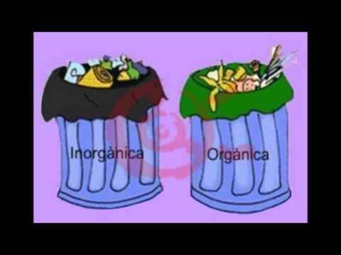 El reciclaje y la separación de basura