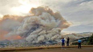 Madeira Wildfire Kills Three People