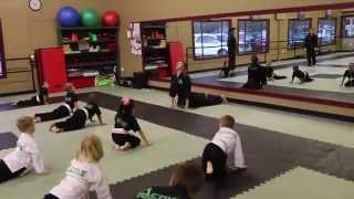 Martial Arts Kids Class Example (Age 4-6)
