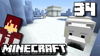 BIKIN PULAU POLAR BEAR ! - Minecraft Survival Indonesia #34