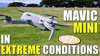 DJI MAVIC MINI Flight Test Review - EXTREME WINDS!.. Will it FLY AWAY? QUICKSHOTS Work?