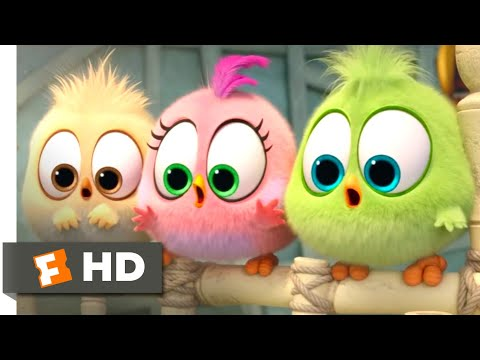 The Angry Birds Movie 2 (2019) - Wittle Sisters Scene (10/10) | Movieclips