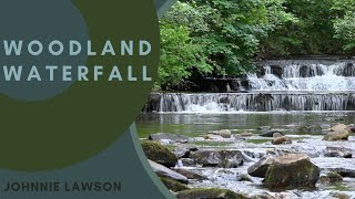 Relaxing Nature Sounds Of A Soothing Waterfall With Forest Bird Song Calm Relaxation Sleeping