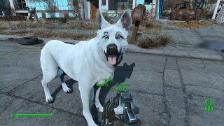 Fallout 4: Direwolf Dogmeat Mod