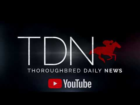 Rising Stars - TDN | Thoroughbred Daily News | Horse Racing