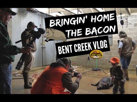 CUZ411 BRINGIN HOME THE BACON - BENT CREEK VLOG