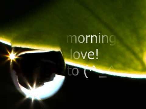 Good Morning My Love Youtube