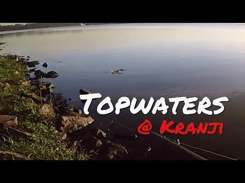 Topwater Fun at Kranji