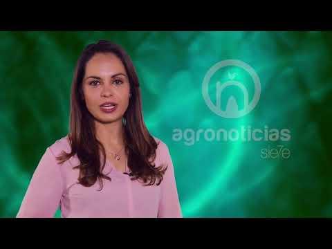 AGRONOTICIAS sie7e PROGRAMA 67