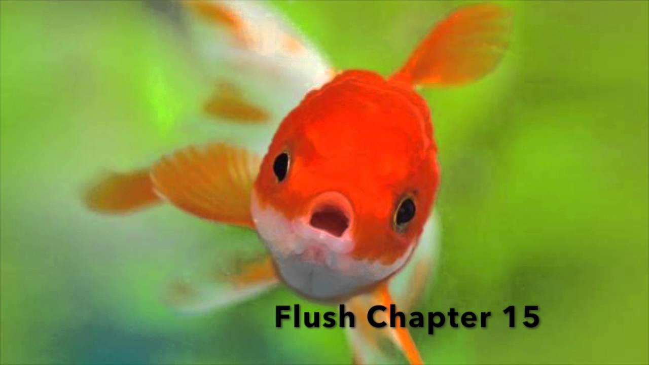 Flush Carl Hiaasen Pdf