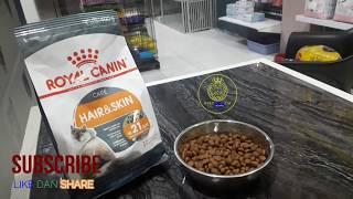 makanan kucing khusus untuk bulu dan kulit kucing