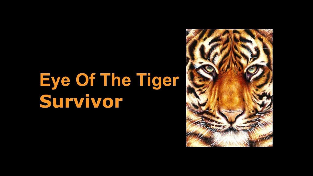 survivor eye of the tiger keyboard cover by david m. Black Bedroom Furniture Sets. Home Design Ideas