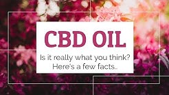 CBD Rich Hemp Oil For Sale - Try Free
