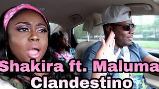 Baixar Shakira, Maluma - Clandestino (Audio) Reaction