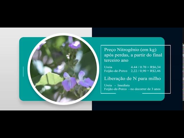 Adubação Verde como Fonte de Nitrogênio