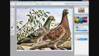 Photoshop Plugin Review Topaz Labs