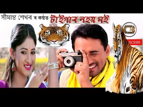New Assamese Video Song 2018|TIGER NOHOI MOI | Sim