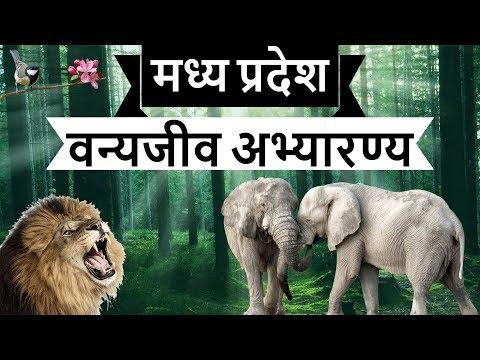 Madhya Pradesh Wildlife Sanctuaries - Static GK Part 3 - MPPSC Vyapam Patwari MPSI MP PCS Police