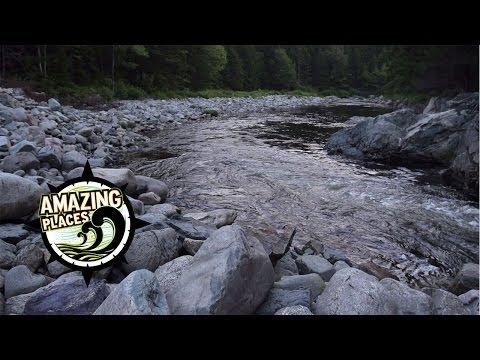 Perfect Atlantic Salmon Habitat in Fundy Park