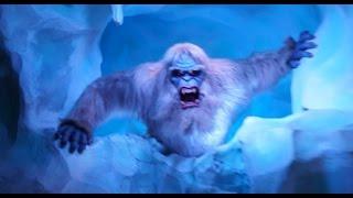 POV: New Abominable Snowman on Matterhorn Bobsleds