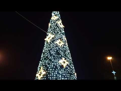 Albero Di Natale Christmas Tree Auchan Casamassima Puglia
