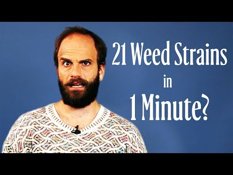 High Maintenance Star Ben Sinclair Tries to Name All Weed Strains in 1 Minute | W Magazine