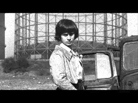 Television Personalities -'Diary of a Young Man'