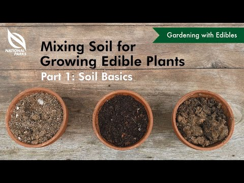 Mixing Soil for Growing Edible Plants (Part 1: Soil Basics)