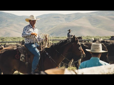 Royalty Free Music Loop Packages with license from $5.00 - Cowboy Wheels