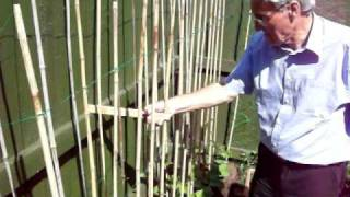 Gardening Tips with Dennis Hubbard (No. 26)