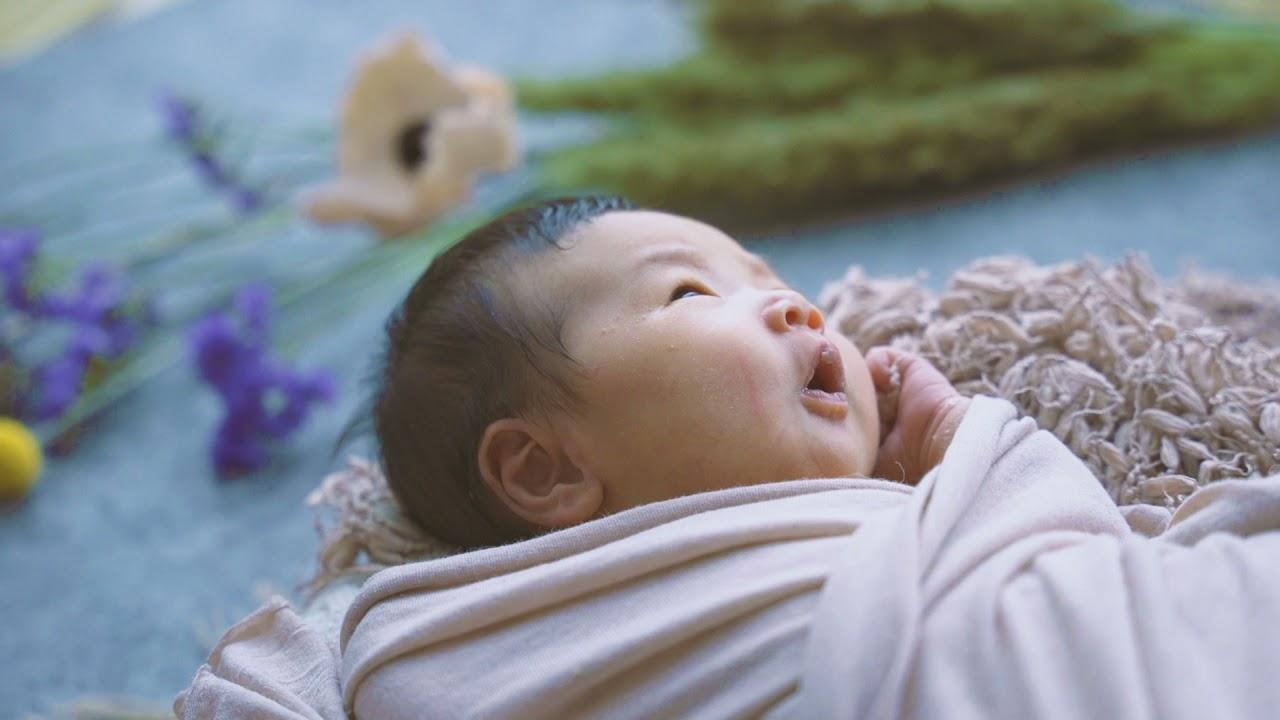 Newborn Portrait - Sample Movie 2