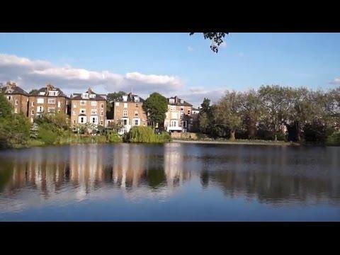 London | Hampstead Heath | one summer's afternoon