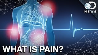 what is pain and why do we need it?