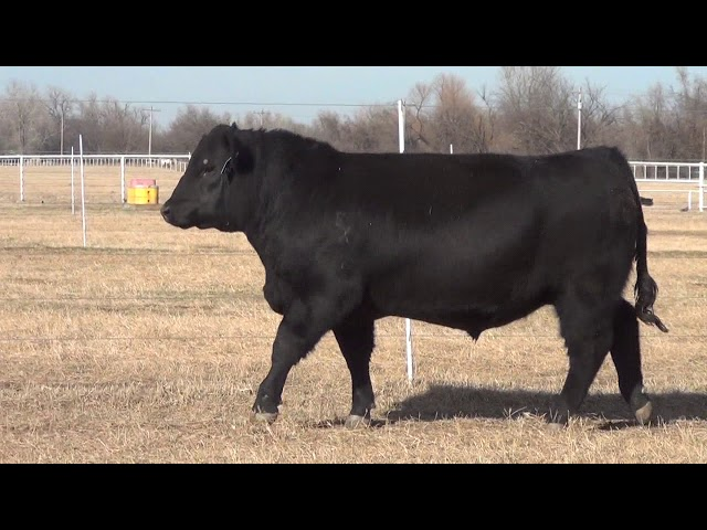Express Ranches Lot 32