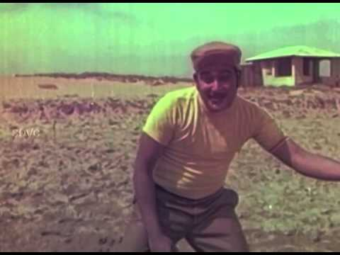 Velli Muthukal - Ravichandran, Bharathi, Manohar - Meendum Vazhven - Tamil Classic Song