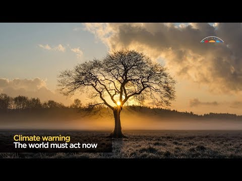 IPCC climate change report