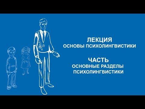 Елена Зачиняева: Основные разделы психолингвистики | Вилла Папирусов