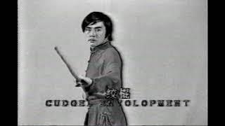 Ушу, кунг фу. Базовая техника шеста Гунь // Wushu, Kung fu Gun Pole Basic Exercise