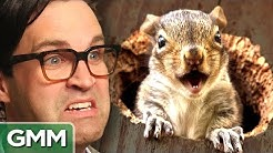 8 Freakiest Squirrel Facts