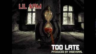 Lil $am - 15 - Too Late (Prod. by Seize the Beat)