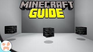 Video Tutorial to Learn How to get wither skulls | Step by Step Guide for  How to get wither skulls