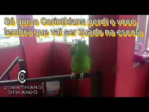 MEME ZUEIRA - FLAMENGO 1 X 0 CORINTHIANS - COPA DO BRASIL ...