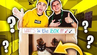 WHAT'S IN THE BOX CHALLENGE CON KLAUS! (cosa c'è nella scatola?)