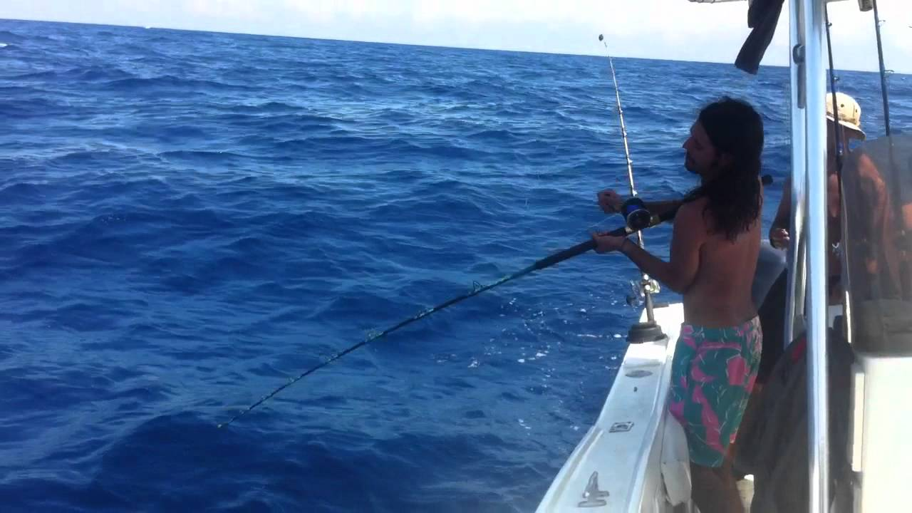 Gulf of mexico deep sea fishing youtube for Deep sea fishing gulf of mexico