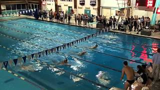WHS v Bridgewater 100M Breast Boys 2014