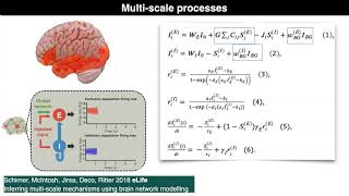 Brain simulation and data integration through computational modeling. -Prof. Dr. Petra Ritter